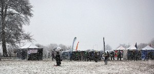 Snowy Sedgefield