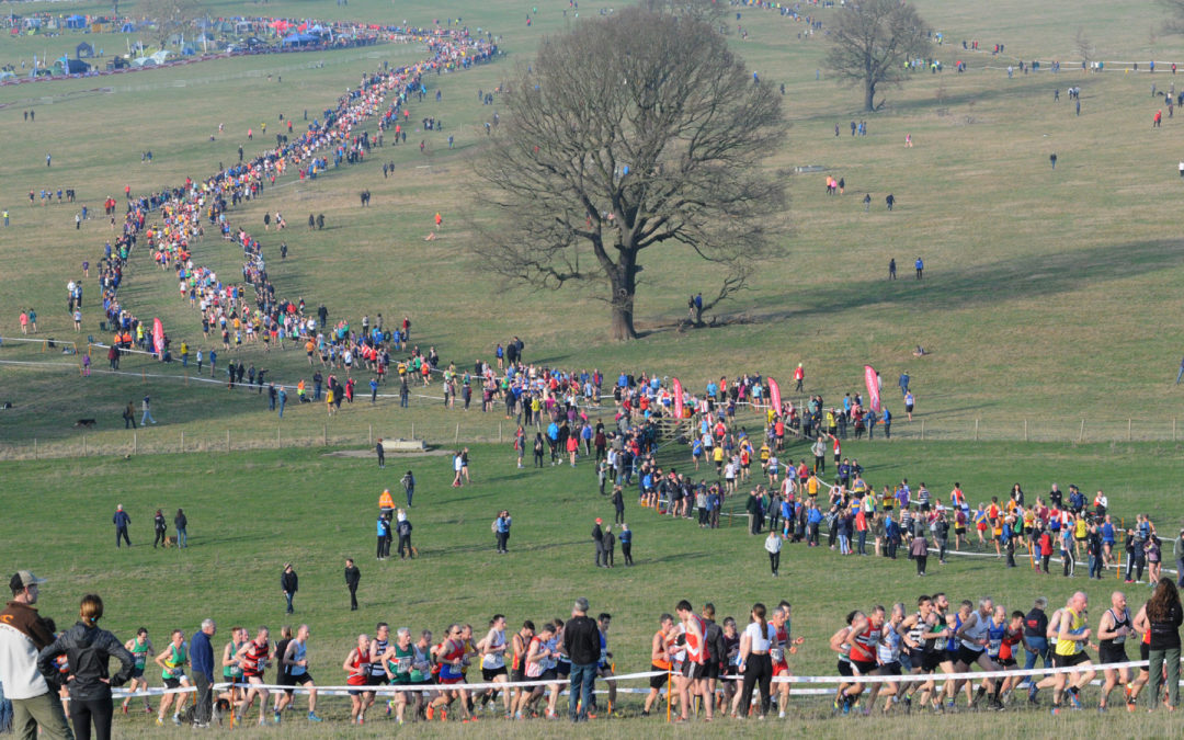 National XC Report – Harewood House Leeds